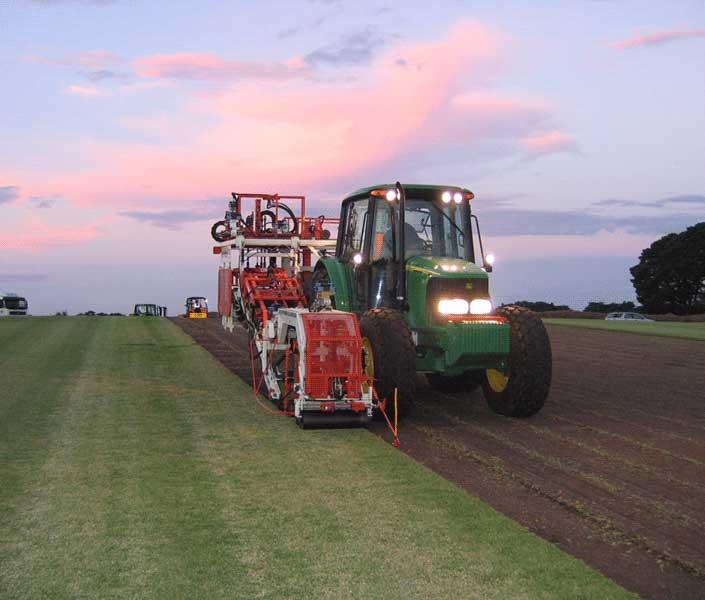 Anco's turf harvesting operation